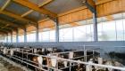 landplan-bayern_jungviehstall_planung_bau_landwirtschaft2012-580 (2)